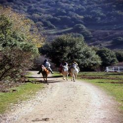 Picture of Private Tour - Safed & Golan Heights